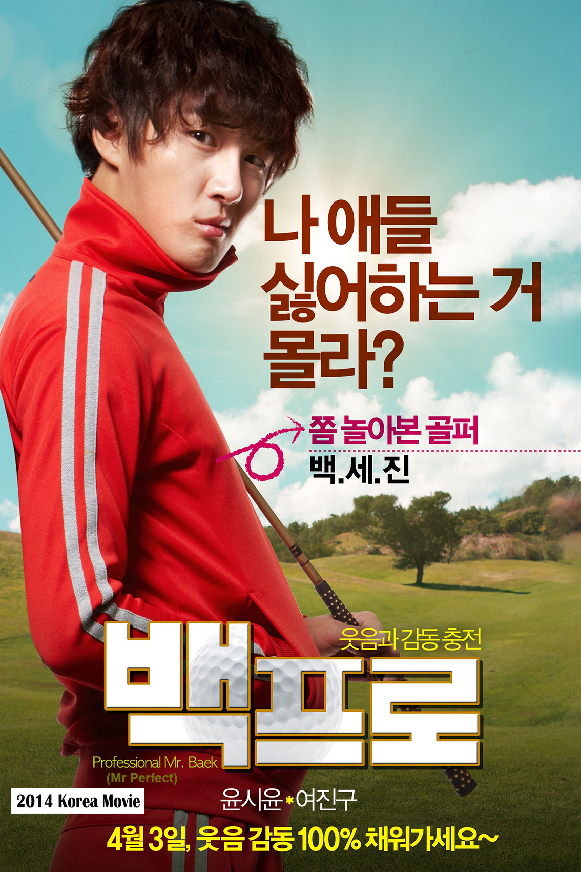 Mr Perfect [2014 Korea Movie]