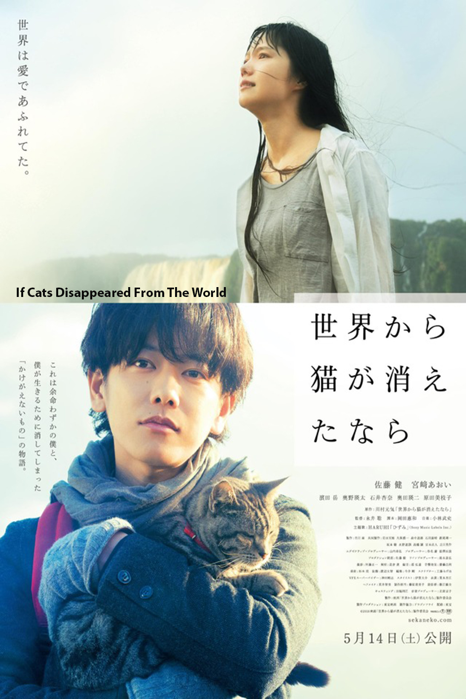 If Cats Disappeared From The World [2016 Japan Movie] Fantasy