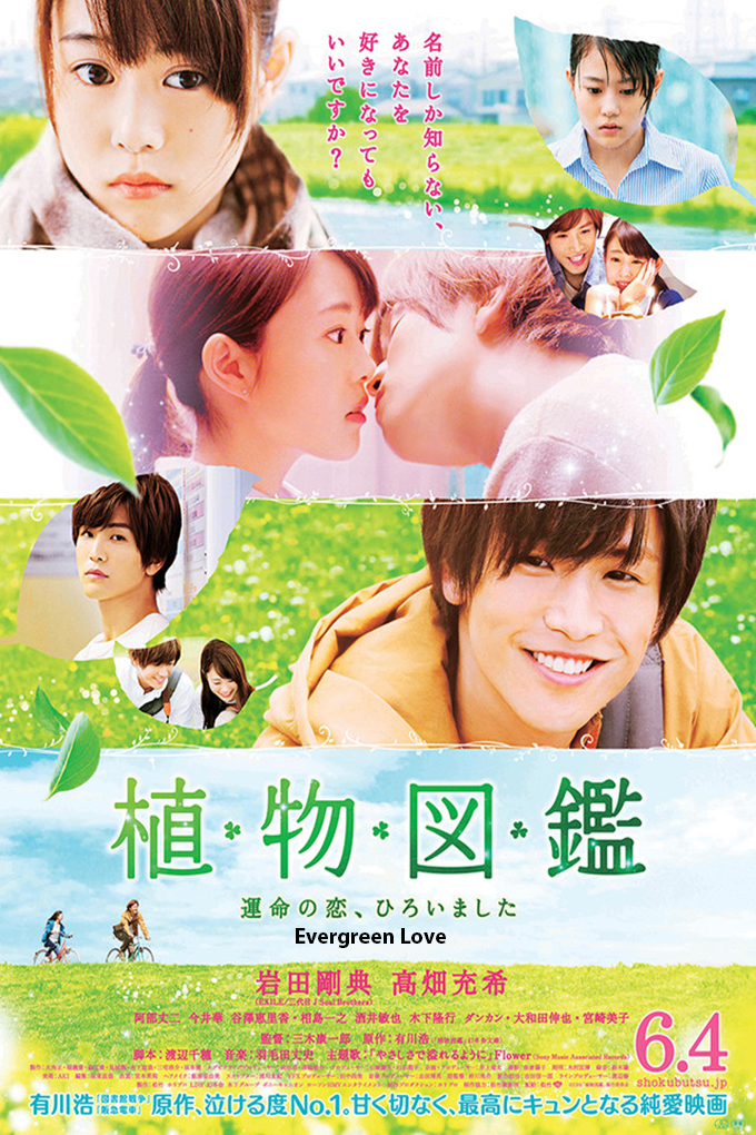 Evergreen Love [2016 Japan Movie] Romance, Drama
