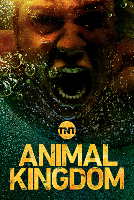 Animal Kingdom SEASON 3 [2019 USA Series] 13 episodes END (2) Drama