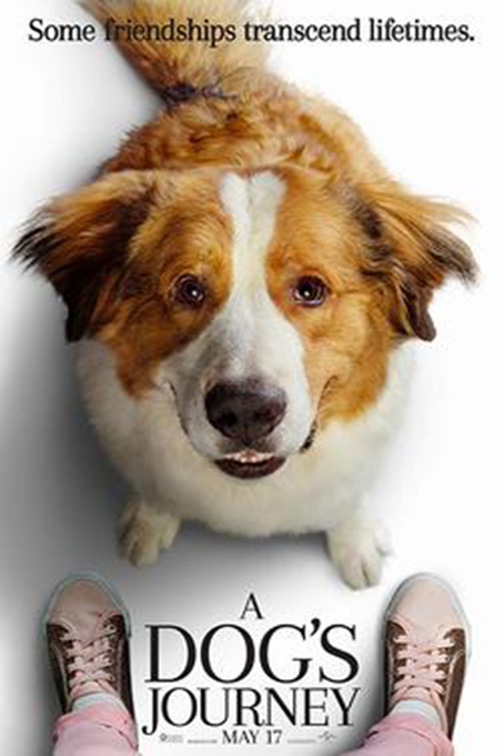 A Dog's Journey [2019 USA Movie] Family, Drama