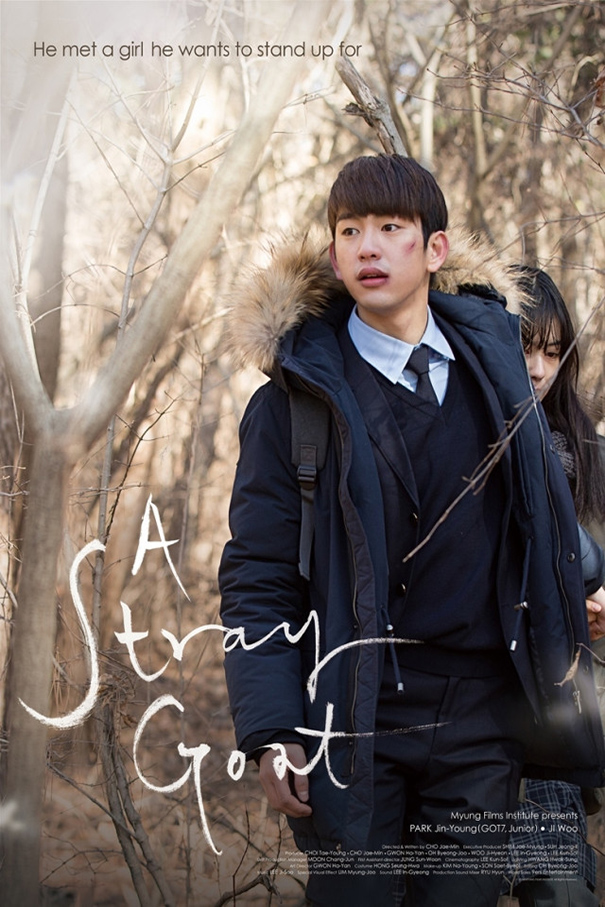 A Stray Goat [2017 South Korea Movie] Drama