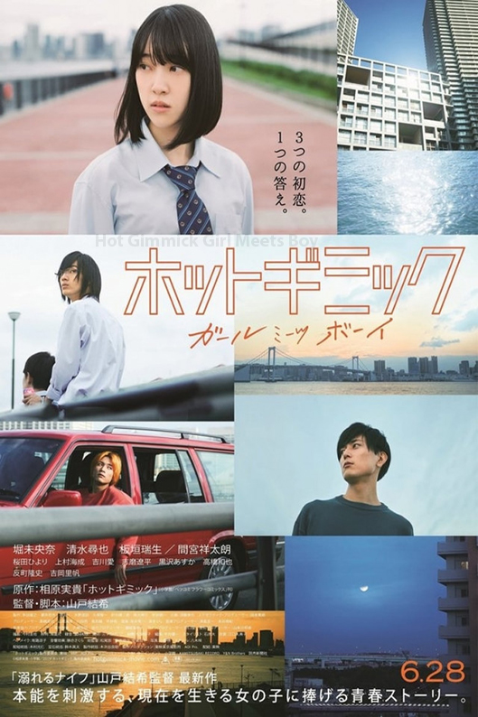 Hot Gimmick: Girl Meets Boy [2019 Japan Movie] Drama