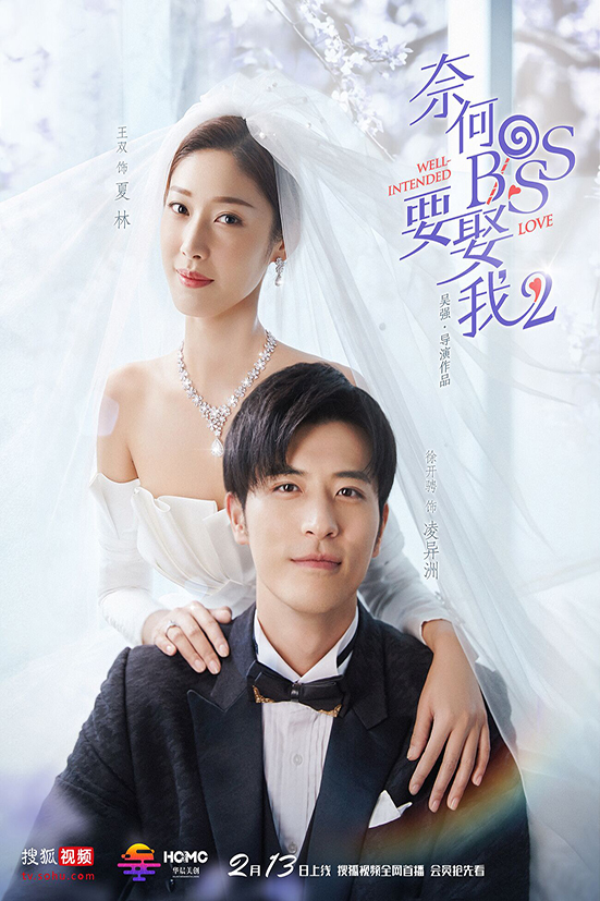 Well Intended Love 2 [2019 China Series] 16 episodes END (3) Drama, Romance
